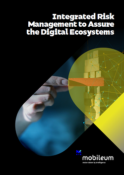 Integrated Risk Management Assure the Digital Ecosystems-1