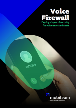 Datasheet - Voice Firewall